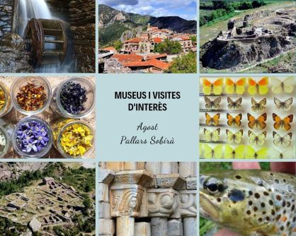museus i visites d'interès (2)